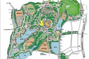 map_hattori